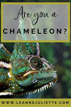 Blog - Are you a chameleon? - www.leannejuliette.com