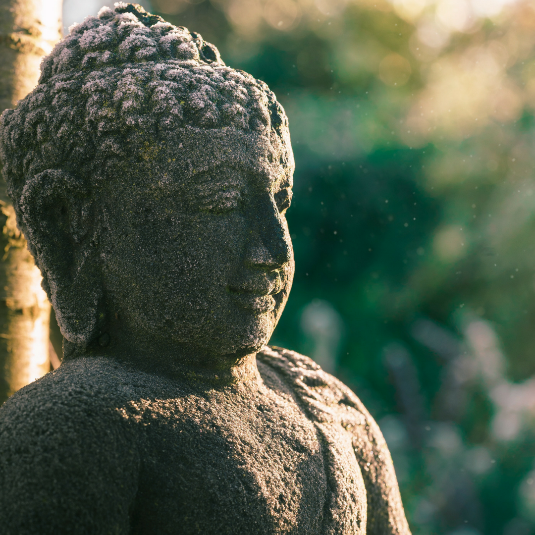 Mindfulness – Top 5 Tips To Overcoming Negative Thoughts and Emotions
