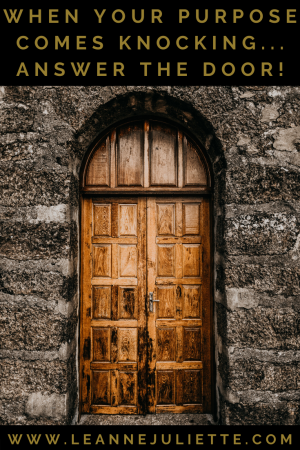 door to be opened - answer door to your soul purpose - Leanne Juliette