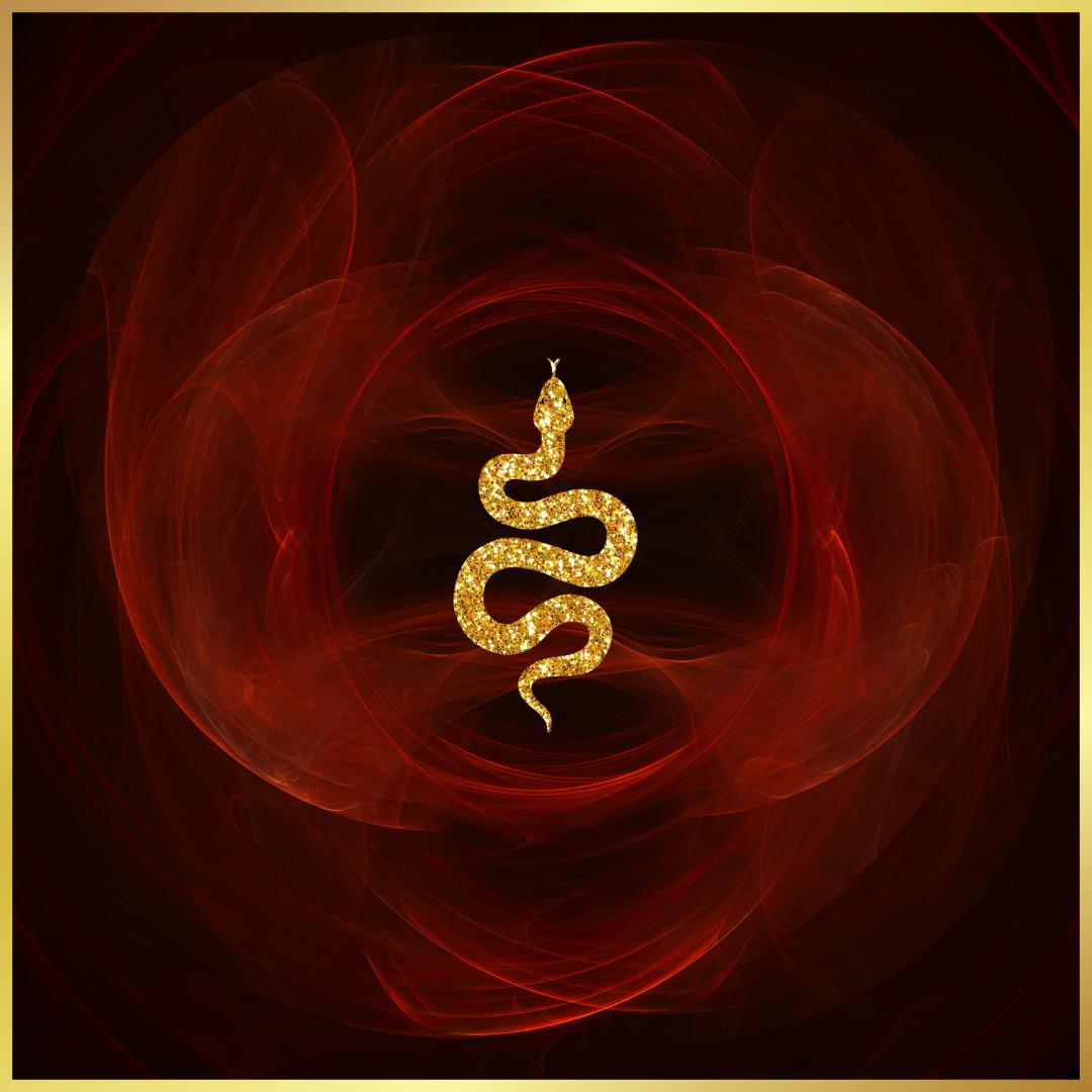 Multidimensional Shadow Sessions - QUANTUM ACTIVATIONS - Leanne Juliette - Shamanic High Priestess - Multidimensional Shadow Consciousness